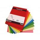 Kopieerpapier A4 160gr Fastprint 10 kleuren x 5 vel pak 100 vel