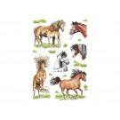 Etiket Herma Getekende Paarden 18st